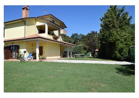 La Casa Nell'Oliveto
