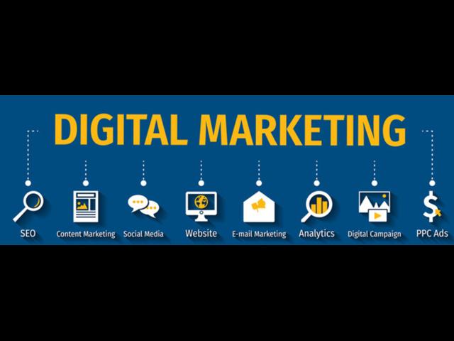 Digital marketing Roma - 5/5
