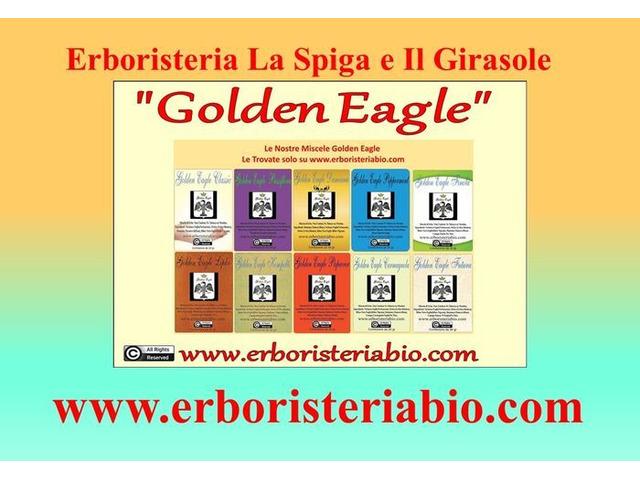 Erboristeria La Spiga e Il Girasole - 4/4