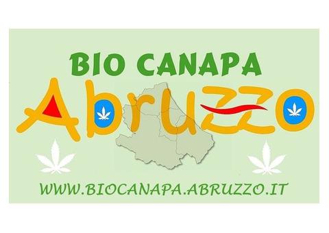Bio Canapa Abruzzo